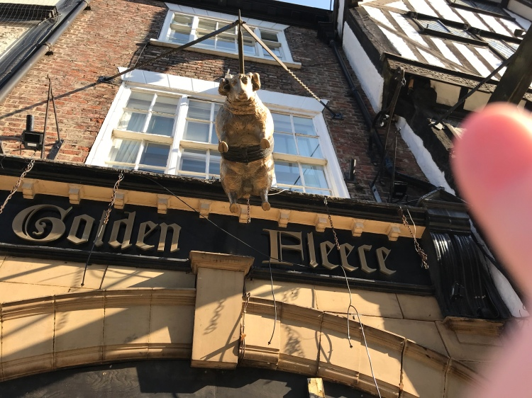 The Golden Fleece pub in York - with my finger pointing to the sheep hanging over the door.